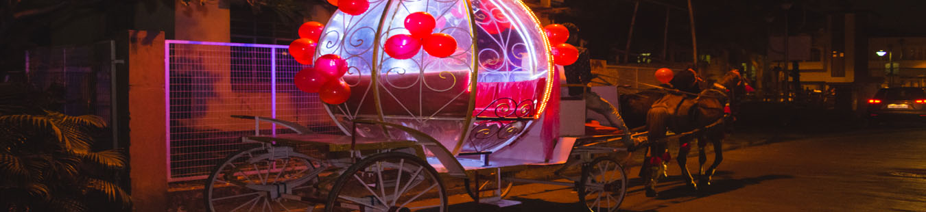 The Fairy Horse Carriage